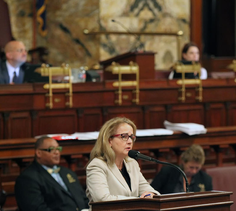 Rep. Madeleine Dean, D-Montgomery, addresses her colleagues as they debate the budget on the floor of the House of Representatives at the Pennsylvania State Capitol in Harrisburg Tuesday, June 30, 2015.