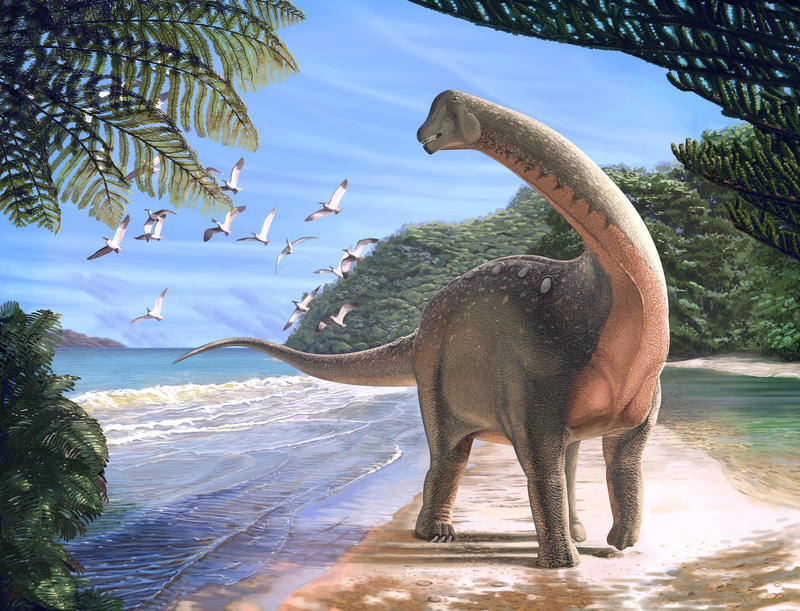 An artist's rendering of the Mansourasaurus shahinae, an African elephant-sized sauropod that lived about 80 million years ago.