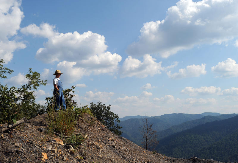 In this Sept. 8, 2008 photo, Larry Gibson stands atop Kayford Mountain and overlooks a mountaintop removal mining site with Coal River Mountain in the background at Kayford Mountain, W.Va.