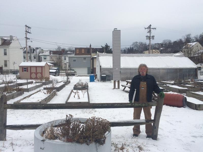 Tom Walker, a semi-retired graphic designer from Millvale, stands in one of the community gardens he helped create.