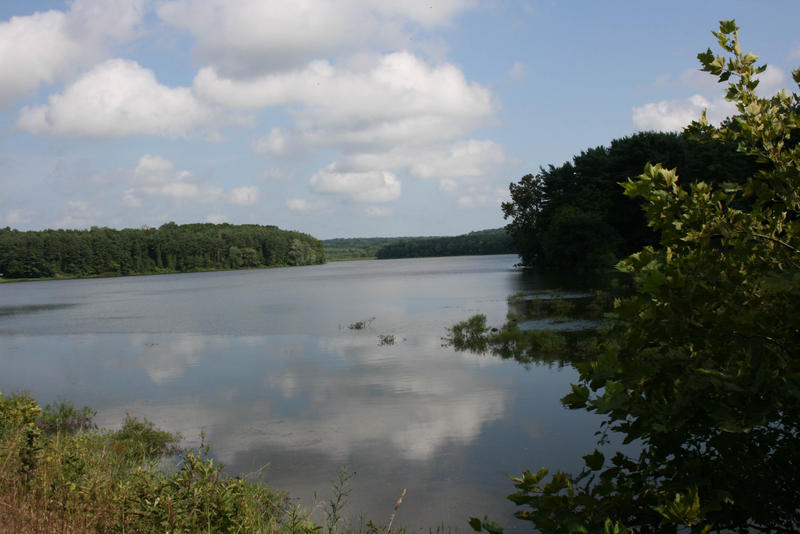 The Octoraro Resevoir in Chester County, which is fed by two streams affected by a 100,000 gallon manure spill.