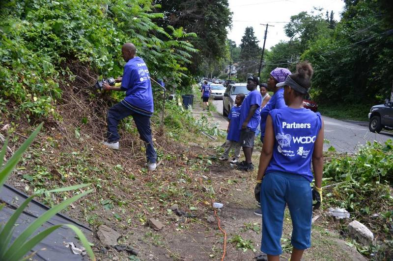 Sanctuary Project volunteers clear overgrown vegetation on Franklin Avenue in Wilkinsburg in July of 2016 as part of Operation Light on Franklin.