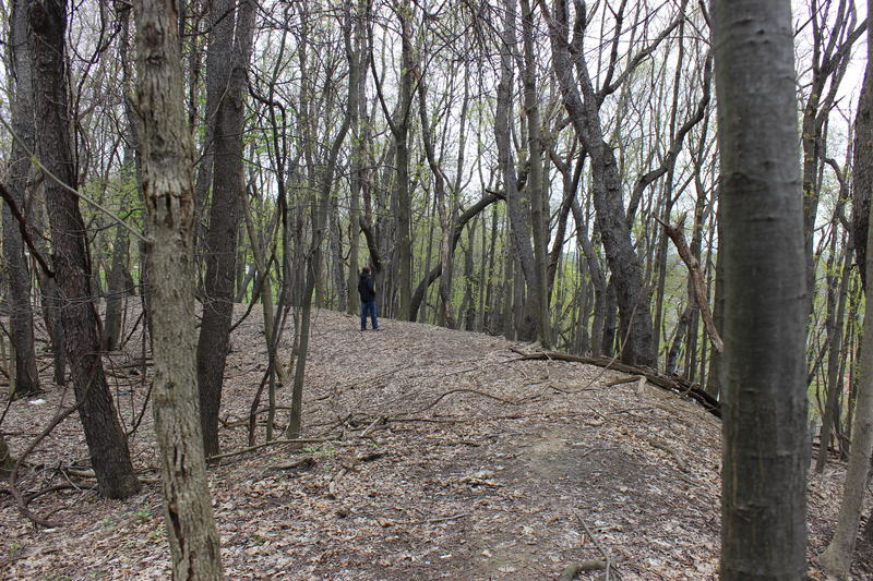 Good Question! listener Chris Comeau walks through the woods near the intersection of Stanton and Morningside Avenues. The area he's standing on is slightly raised, having been built as a Civil War fortification by Pittsburghers in 1863.