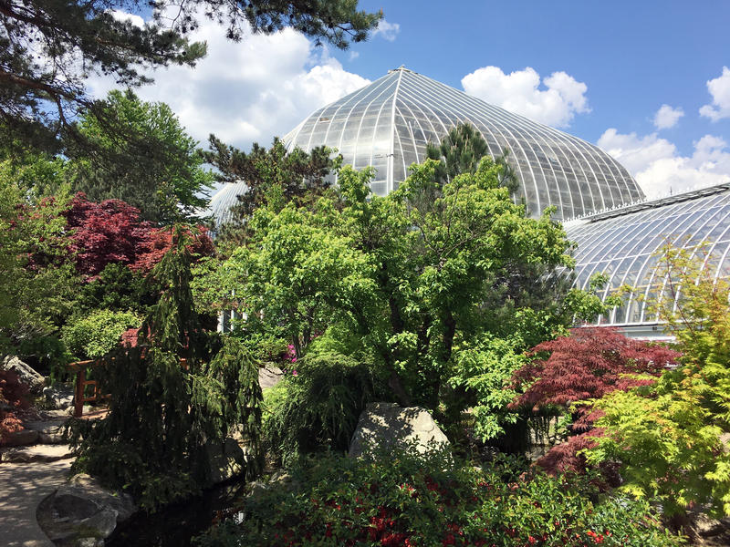 Phipps Conservatory is undergoing three separate renovation projects this summer. Two will take place on its main Schenley Park campus, and a third is slated for its Garden Center in Mellon Park.