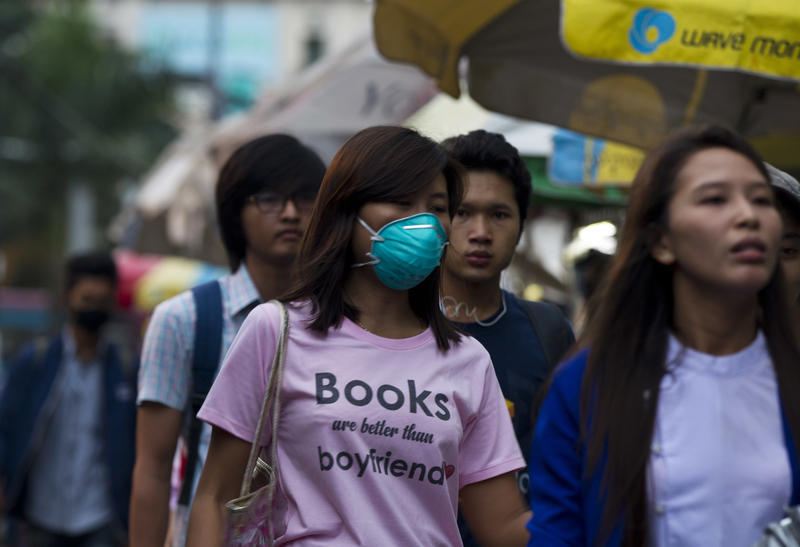 A woman wears a mask to protect herself agains the swine flu virus Thursday, July 27, 2017 in Yangon, Myanmar.
