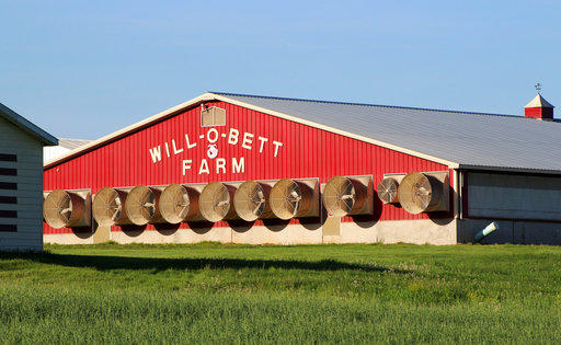 In this May 21, 2018 photo, a barn that can hold up to 4,800 hogs sits at Will-O-Bett Farm outside of Bernwick, Pa.