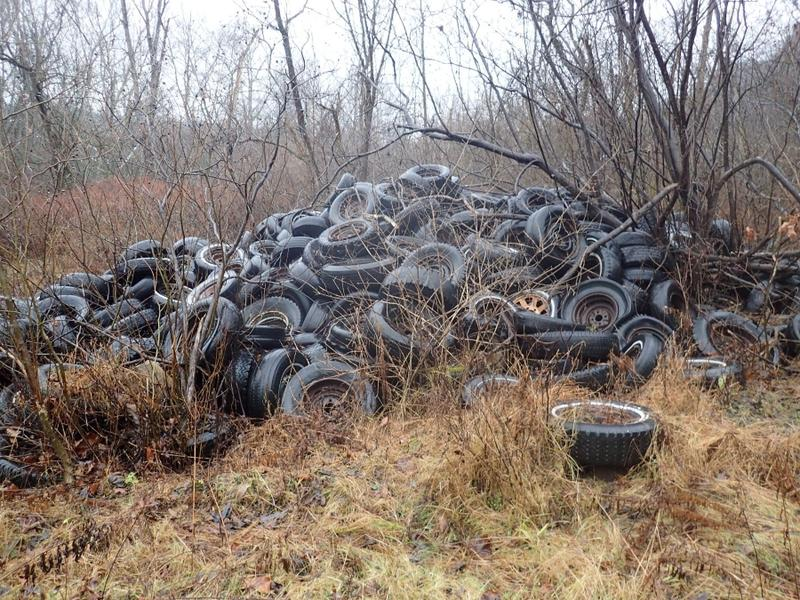 More than 350 tons of trash and at least 10,000 tires were found at this dump site along Creek Rd. in Kennedy Township.