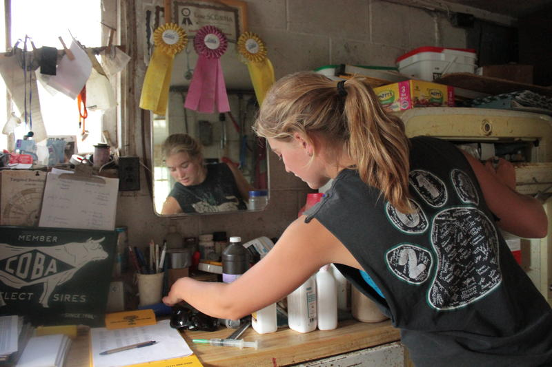 Friedline prepares a vaccine for one of the family's 56 milking cows.