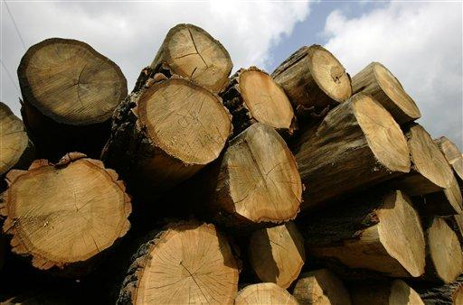 Timber is stacked before being processed at Brooks Lumber & Timber Harvesting in Ralston, Pa. on Wednesday, July 18, 2007.