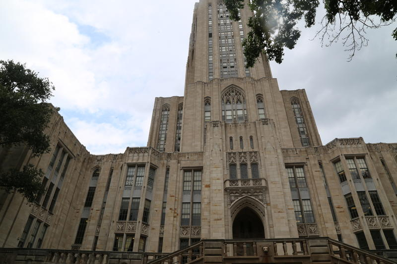 University of Pittsburgh graduate students say they should be permitted to unionized, since they are treated similarly to employees of the institution.