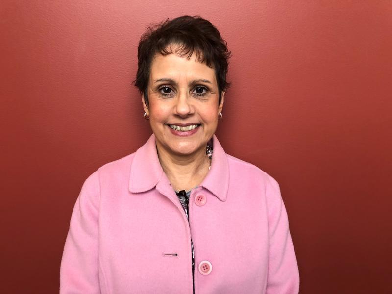 Roseanne Javorsky is the Interim Executive Director of the Allegheny Intermediate Unit.