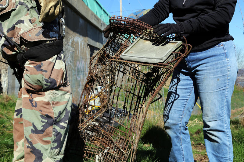 Volunteers pulled the rusted carcass of an abandoned shopping cart up from a lower slope in Emerald View Park. Coordinator Judith Koch offered a free coffee to anyone who could retrieve it during clean-up Saturday, April 8, 2017.
