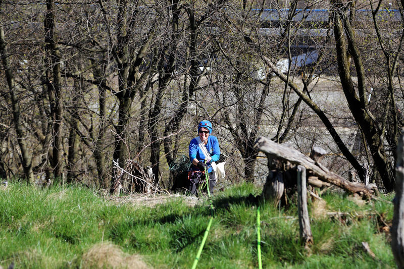 Laura Kustaborder, 46, of Penn Hills clips tree stakes, plastic netting and asundry trash to her climbing harness as she scales the western slop of Emerald View Park above the Ohio River as part of a volunteer trash pick-up on Saturday, April 8, 2017.