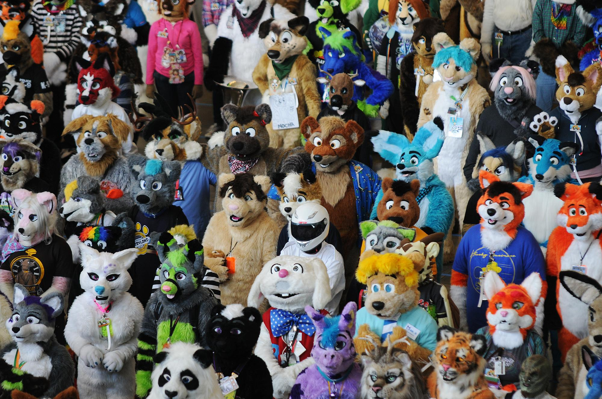 Photos: Venture Inside Anthrocon the Worlds Largest - Anime Hairstyles Female