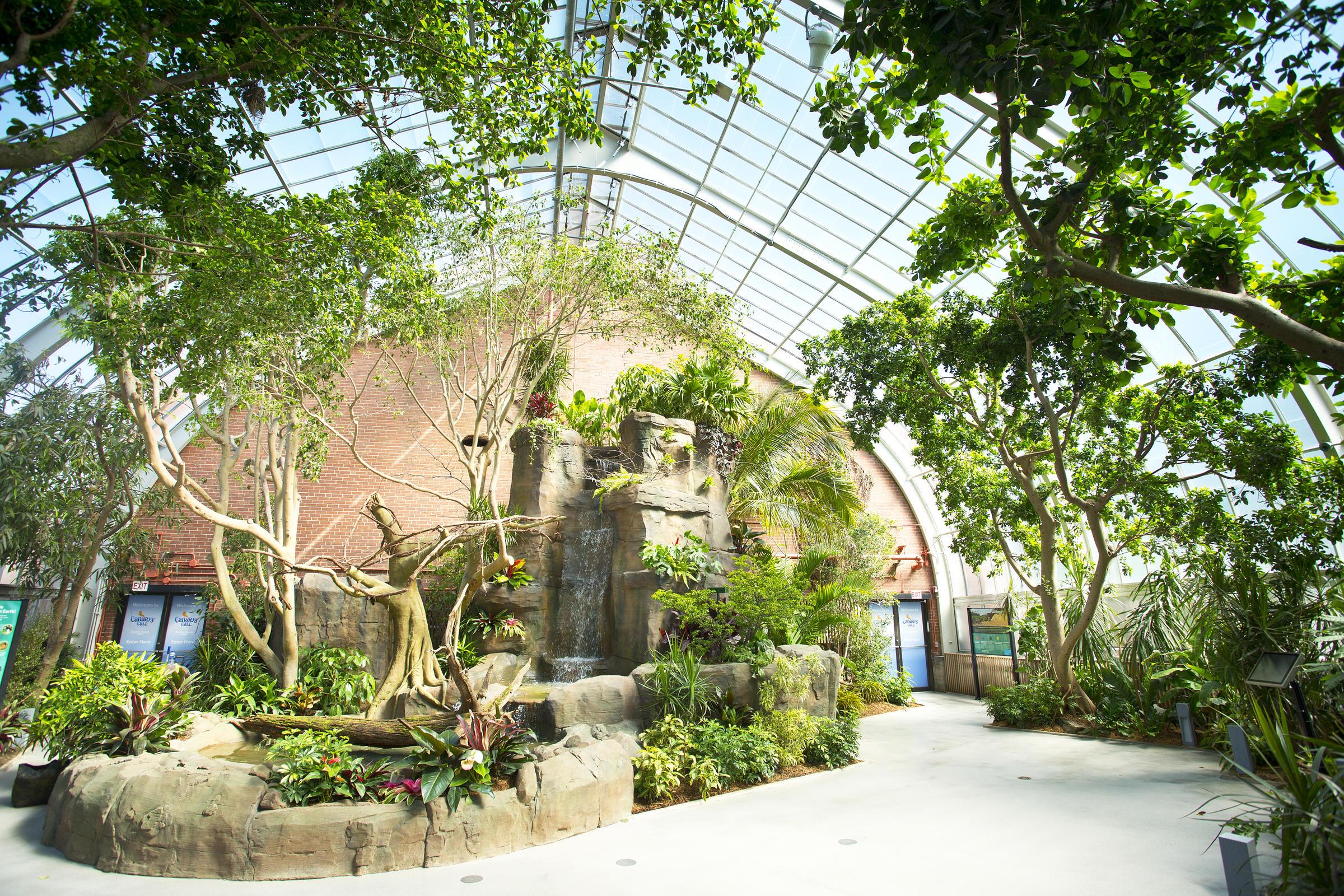 The Aviarys New Waterfall Is 15 Feet Tall