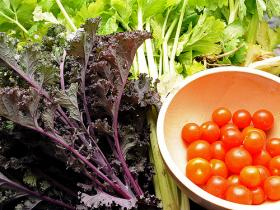 You might have a ton of vegetables from your back yard garden, but do you know what to do with them?