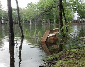 flooded park bench