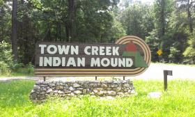 The Town Creek Indian Mound.