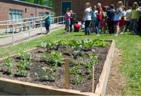 Raised bed garden at Catawba Heights School.