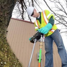 A Rainbow Treecare worker injects Cambistat into the soil around a tree in Charlotte.