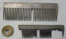 Combs and a button found at Camp Asylum.