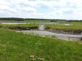 The primary coal ash pond at Riverbend. The grey bed in the foreground is coal ash.