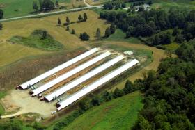 Environmental watchdogs will fly over agriculture facilities, such as this poultry farm, to document problems.