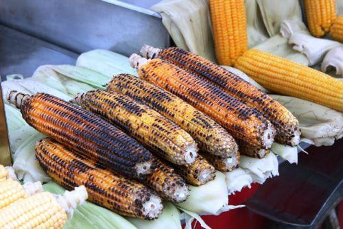 Grilled corn at the street vendor