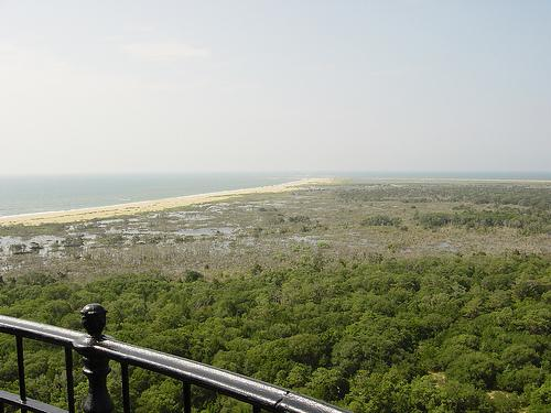 View of the cost from the Cape Hatteras lighthouse.