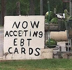 SNAP recipients receive EBT (electronic benefit transfer) debit cards to use for their food purchases.