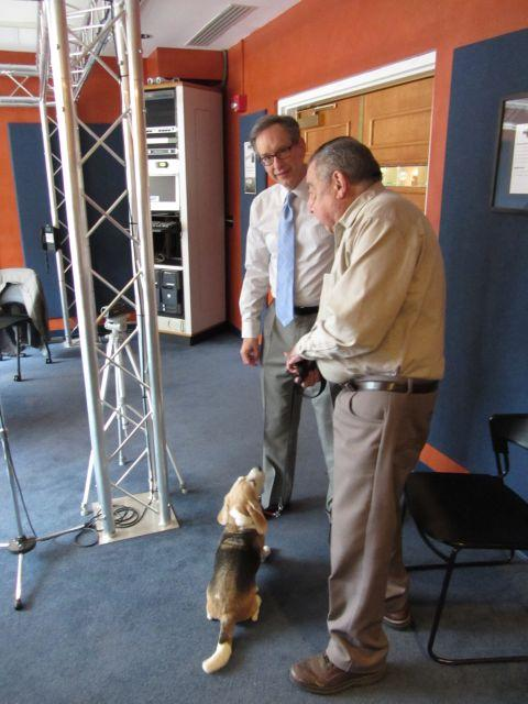 Dogs in the Charlotte Talks studio! Twelve-year-old Mary the Beagle with Mike and her owner.