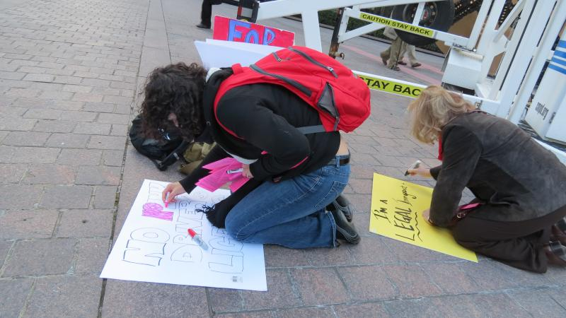 Protesters made signs about the pink licenses.