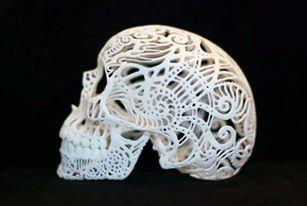 A 3D printed skull by Artist Joshua Harker.