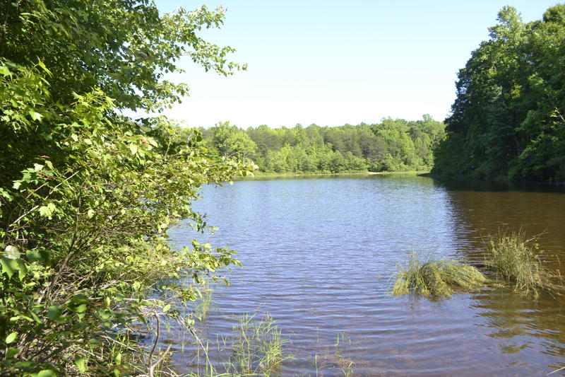 The lake at Crowders Mountain