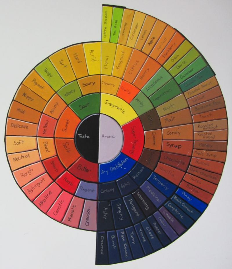 A taste and aroma chart on the wall at Boquete Mountain Coffee Roasters.