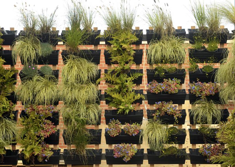 The solar house includes a vertical garden commercial green wall system called 'Wallgarden,' made up of individual removable planters with a water-conserving drip irrigation system. Each box has holes in the bottom to allow water to drain.