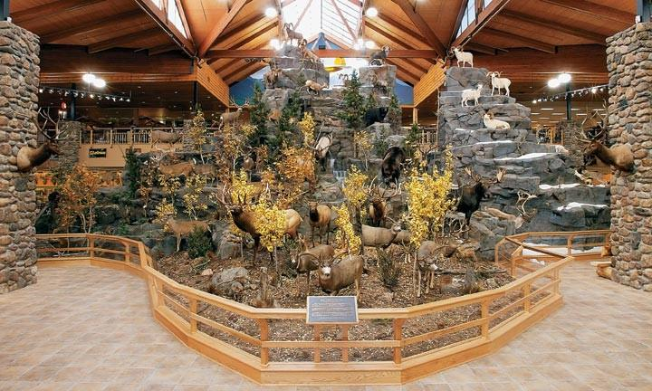 "The ""mountain"" inside the Kansas City, Mo. Cabela's"