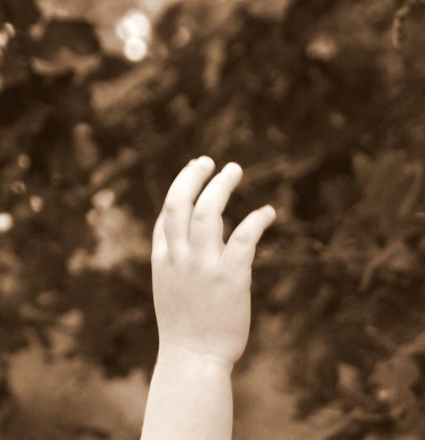 A child's raised hand.