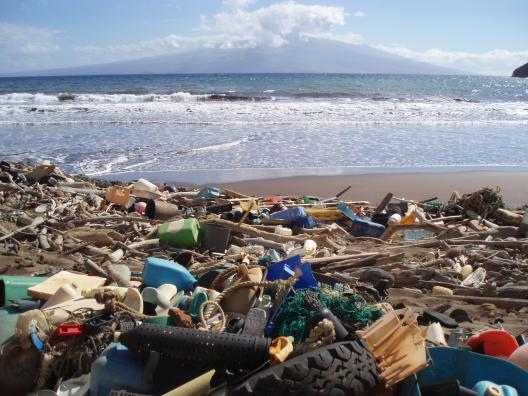 Marine debris in Kanapou Bay, Hawaii
