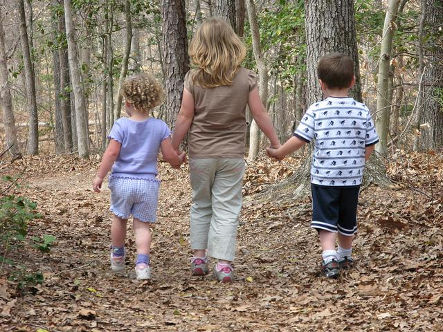 Children walking in the woods.