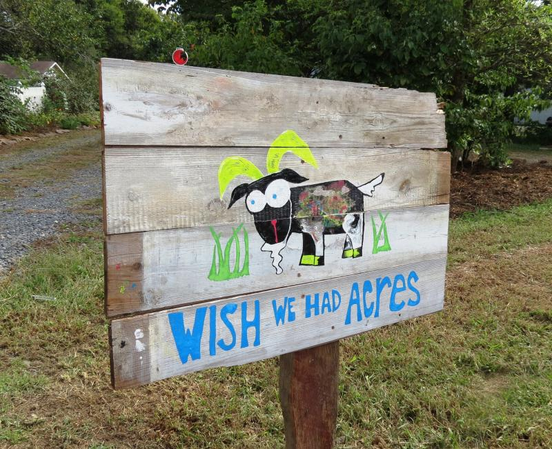 Wish We Had Acres is a goat and herb farm in South Charlotte. It participated on the Know Your Farms Tour for the first time this year.
