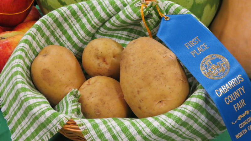 These potatoes won first place at the Cabarrus County Fair.