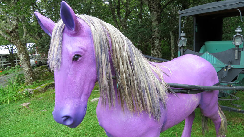 A horse of a different color.