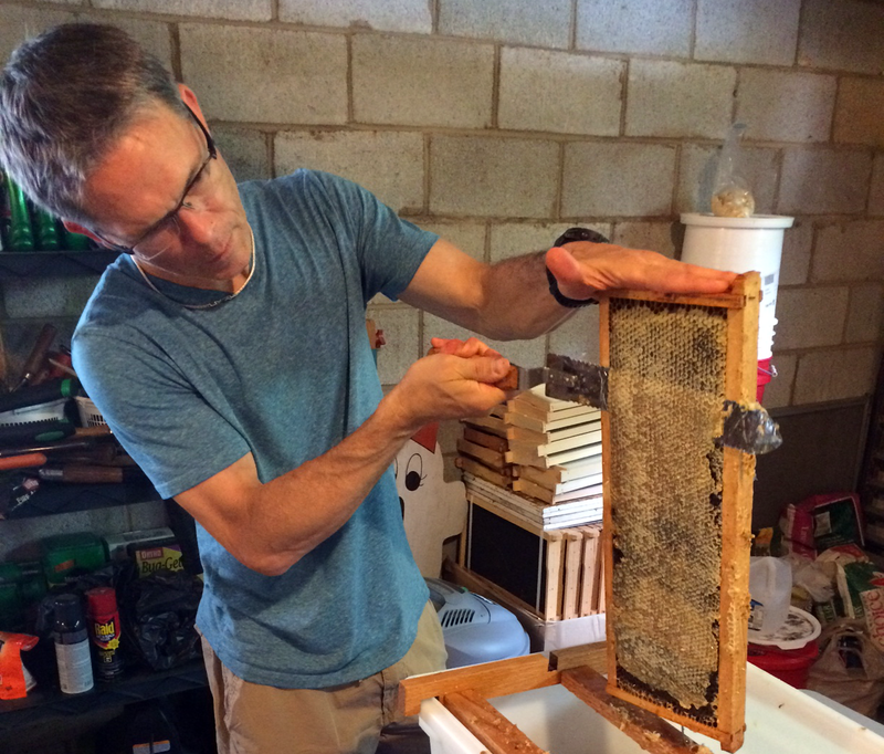 man cuts honeycomb from frame