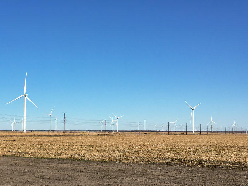 A wind farm near Elizabeth City, NC.
