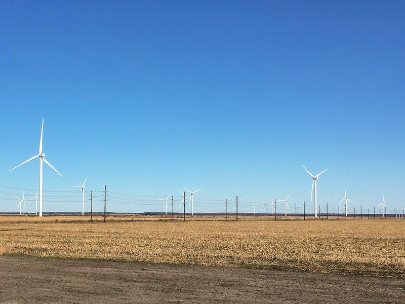 A wind farm near Elizabeth City, NC.