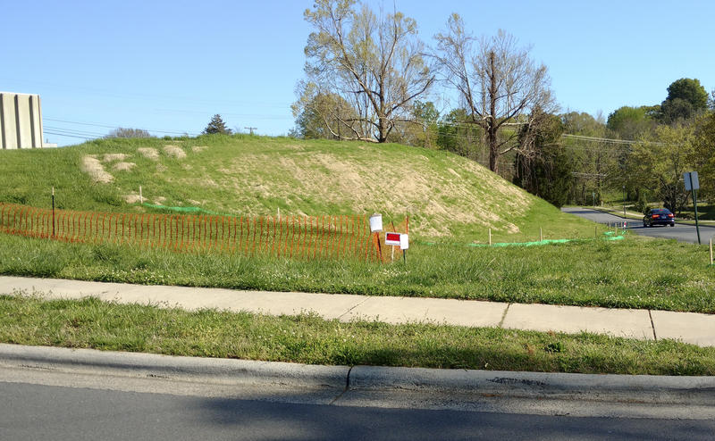 Grass has now grown over a hillside where workers secured buried asbestos this past winter.