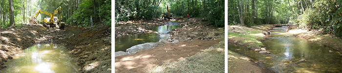 A look at the restoration process predicted at Reedy Creek and surrounding streams.