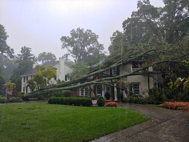 Fallen tree on a home on Queens Road West in Charlotte.