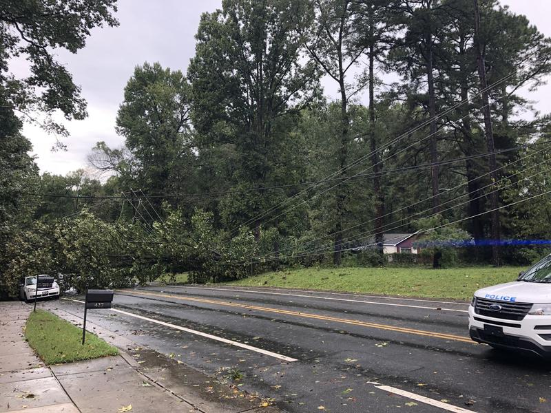 A tree fallen on powerlines on Tom Hunter Road in Charlotte.